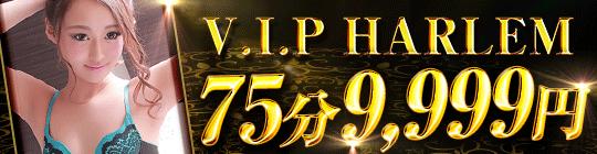 V.I.P HARLEM(白河店) -ビップハーレム-