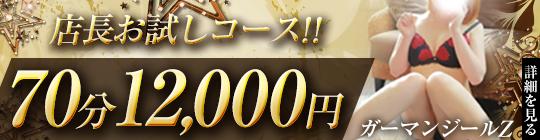 GARMAN JEAL Z -ガーマンジールZ-